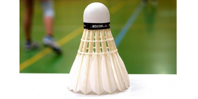 LSI – Ledøje-Smørum Badminton