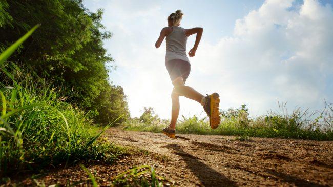 Ny sæson starter nu: Buresøbanden har både gymnastik, løb og stavgang i skoven