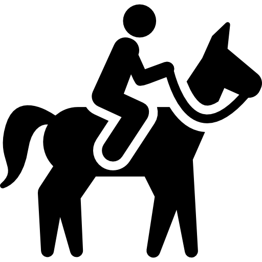 Rideskole / Rideklub